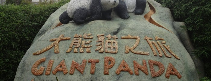Giant Panda Adventure is one of Places I've been to....
