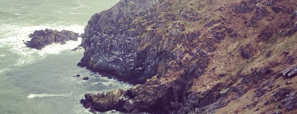 Howth Cliff Walk is one of Dublin - the ultimate guide.