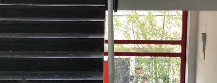 TMMOB Mimarlar Odası is one of Mimarlık Kurumları.