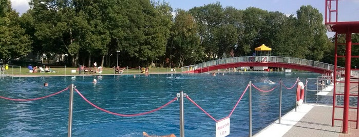Schwimmbäder Frankfurt schwimmbäder frankfurt