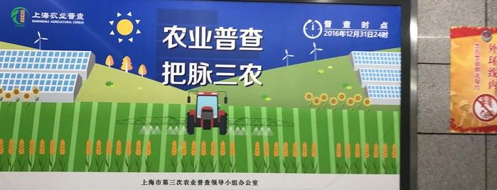 Xincun Rd. Metro Stn. is one of 上海轨道交通7号线 | Shanghai Metro Line 7.