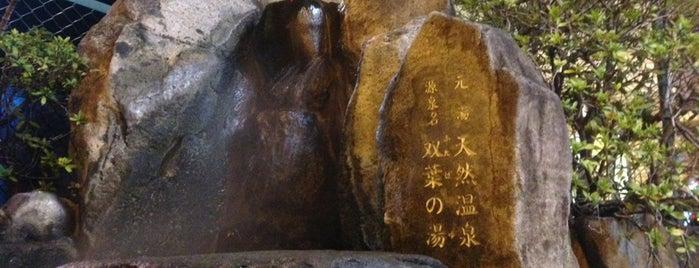 双葉温泉 双葉の湯 男湯露天風呂内 is one of 銭湯.