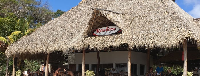 Loco Tacos Bar & Grill is one of Locations Discovered.