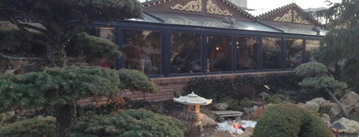Mandarin Restaurant is one of 20 favorite restaurants.