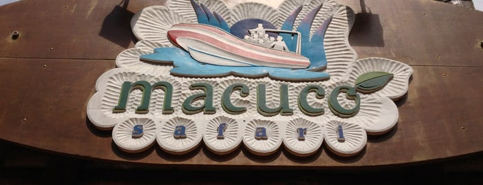 Macuco Safari is one of Curitiba e Paraná.