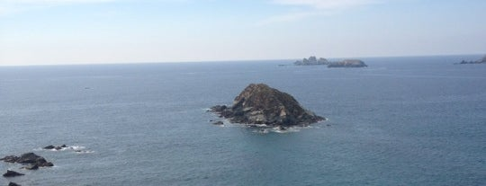 Pacifica Aqua is one of Ixtapa.