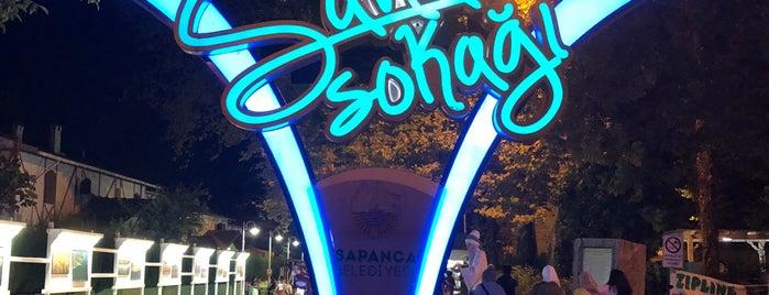 sapanca sanat sokağı is one of Maşukiye.