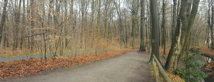 Eilenriede Joggingpfad is one of Hannover-List.