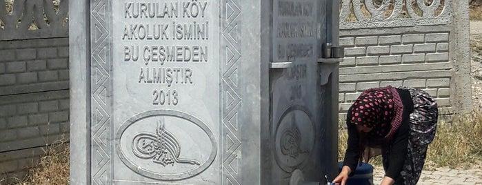 Akoluk is one of Kütahya | Merkez Köyler.