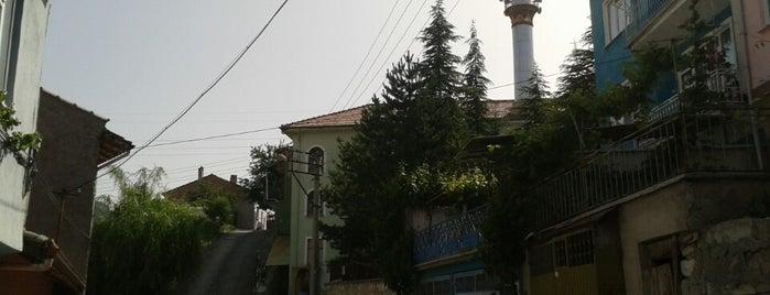 Gültepe Emirler Camii is one of Kütahya | Spiritüel Merkezler.