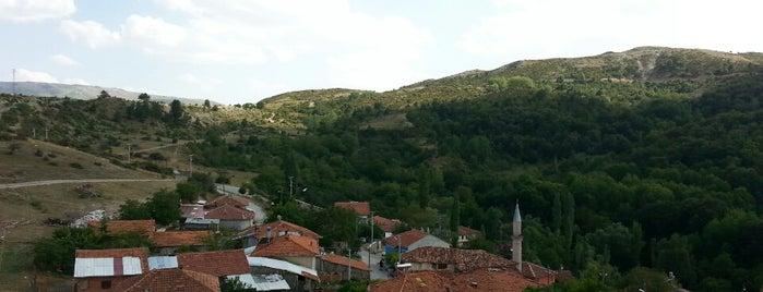 Aydoğdu is one of Kütahya'nın Mahalleleri.