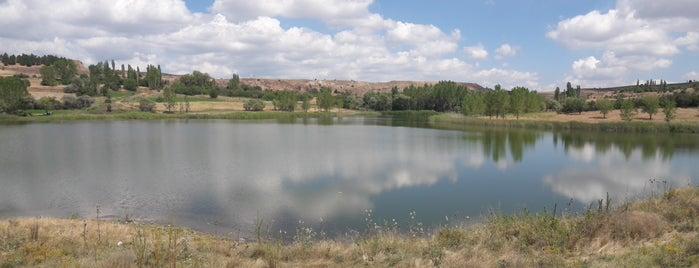 Arslanlı is one of Kütahya | Merkez Köyler.
