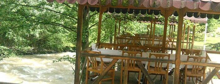 Sümer Restaurant is one of karadeniz.