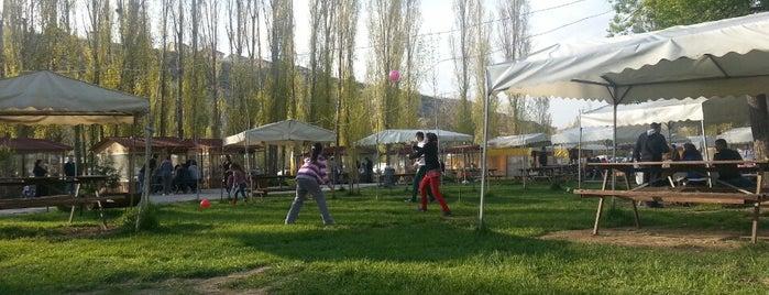 Kavaklık Piknik Alanı is one of Denenenler :).