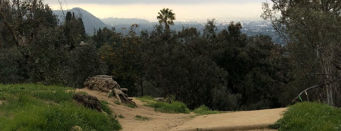 Mountain Top Elysian Park is one of Cool things to see and do in Los Angeles.