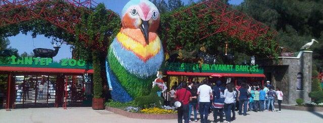 Gaziantep Hayvanat Bahçesi is one of Top 10 favorites places in Gaziantep, Türkiye.