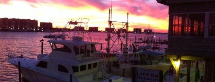 Harbor Docks is one of Florida.
