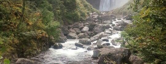 賀老の滝 (飛竜の滝) is one of 日本の滝百選.