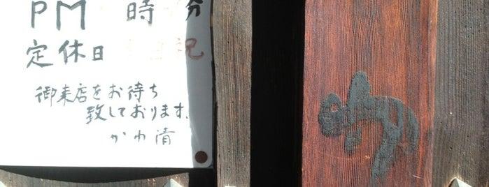 かわ清 is one of 阿佐ヶ谷スターロード.
