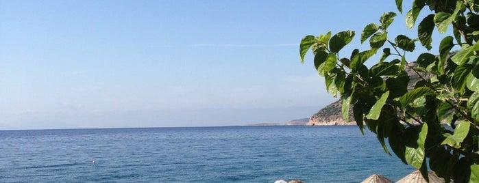 Poyraz Restaurant & Pansiyon is one of Ege Akdeniz hevesi.