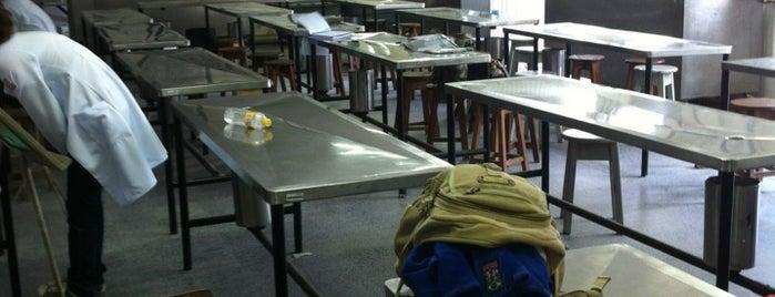 Anfiteatro de Anatomia - UPE is one of Estudo.
