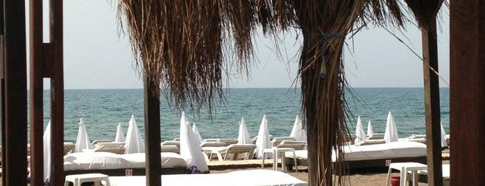 Zuga Beach Club is one of Gezelim görelim.