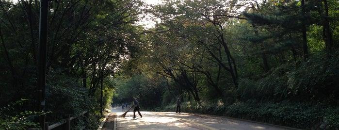 Namsan Walking Trail is one of Сеул.