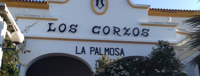 Los Corzos is one of diferentes ciudades.