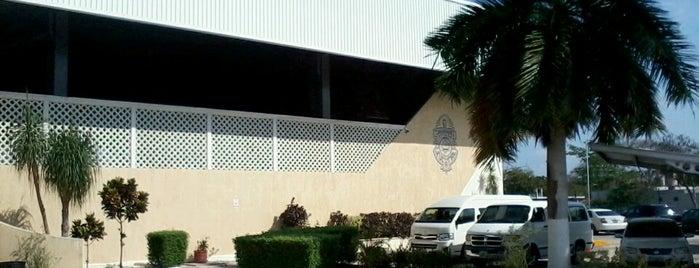Escuela Preparatoria 2 (UADY) is one of Lugares frecuentes.