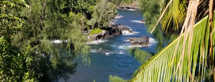 Onomea Bay is one of Enjoy the Big Island like a local.