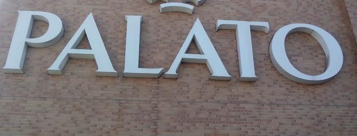 Palato is one of Atendimento nota 10..