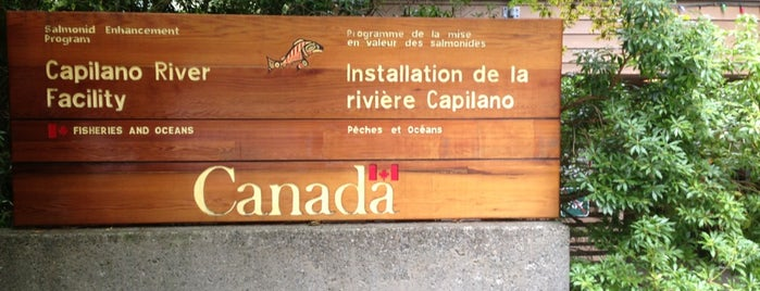 Capilano River Hatchery is one of Favorite Great Outdoors (Canadian West Coast).