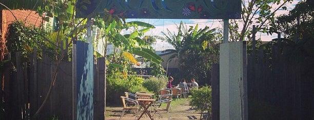 Mandala Organic Arts is one of Gold Coast.