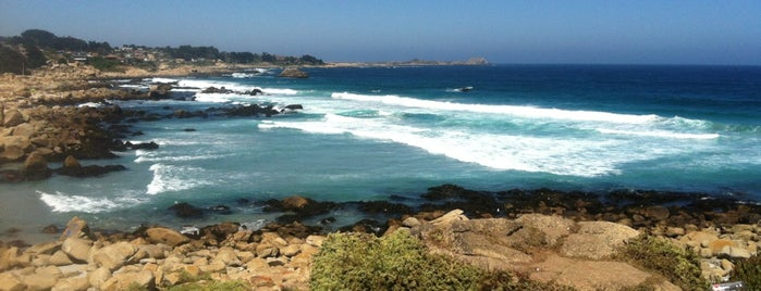 Playa Las Conchitas is one of สถานที่ที่ Loreto ถูกใจ.
