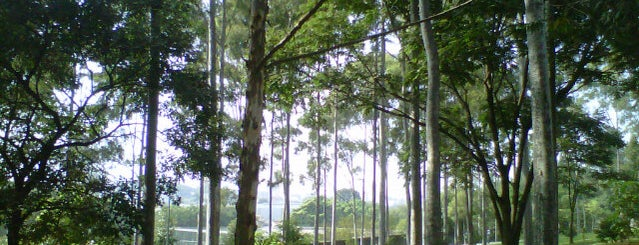 Parque Ecológico Vila Prudente (Profª Lydia Natalizio Diogo) is one of #IHeartSãoPaulo.