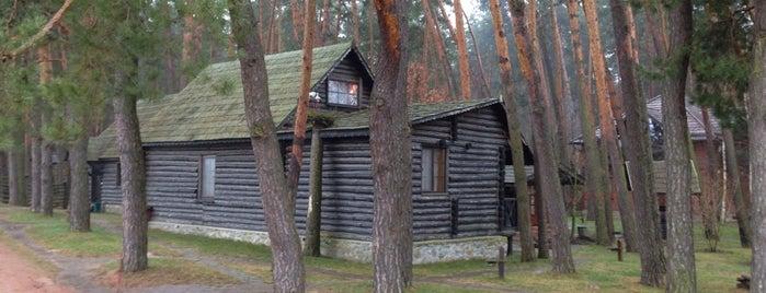 Чудодієво is one of загород.