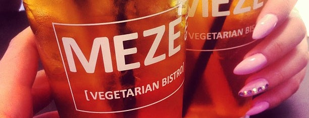 MEZE 119 is one of St Pete / Tampa area vegan options.