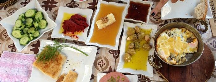Tereci Yöresel Bakkal is one of Gezmece ve Yemece.