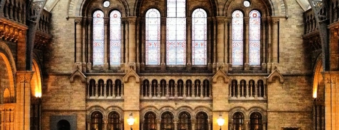 Natural History Museum is one of London tour.