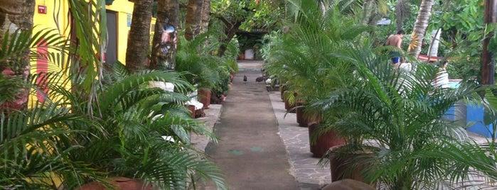 Hotel Rancho Estero y Mar is one of Restaurantes.
