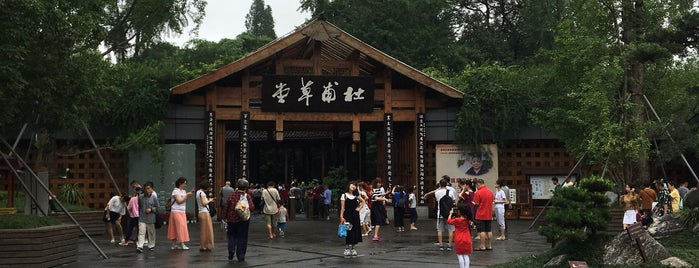 Du Fu Thatched Cottage Museum is one of City Liste - Chengdu.