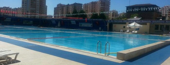 Hayalpark Olimpik Açık Yüzme Havuzu is one of Adana.
