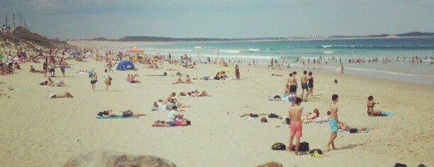 Cronulla Beach is one of Glam dogs in Sydney.