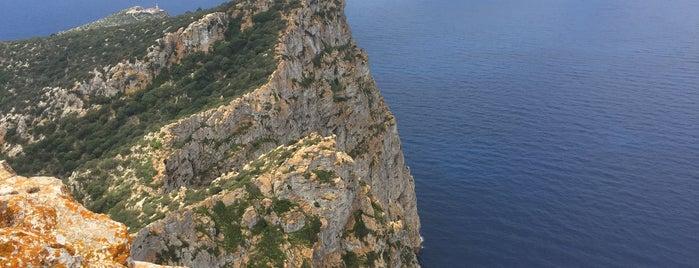 Parc Natural de sa Dragonera is one of Mallorca Birdwatching/Ornithology.
