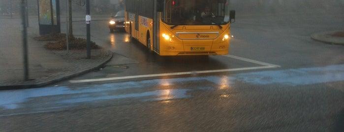 Bus 21 (Hellerup st. - Rødovre st.) is one of Lokale buslinjer i Hovedstadsområdet.