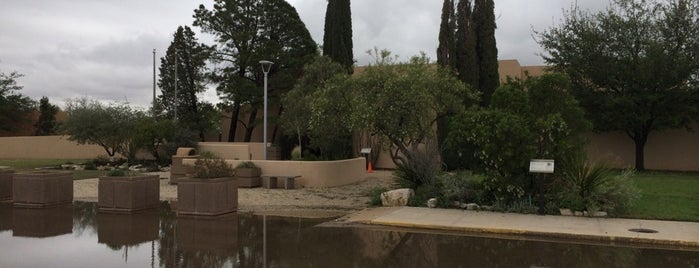 A Local S Guide 48 Hours In Carlsbad New Mexico