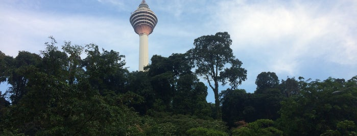 Bukit Nanas Forest Reserve is one of A.