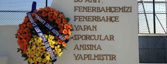 Fenerbahçe Spor Klubü is one of İstanblue.