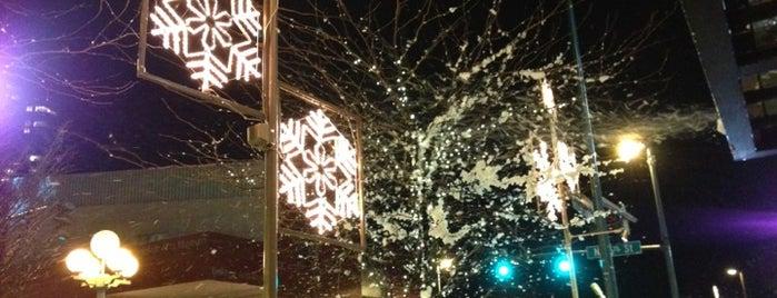 Snowflake Lane is one of Bellevue Christmas List.