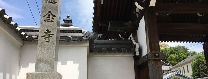 随念寺 is one of グレート家康公「葵」武将隊.